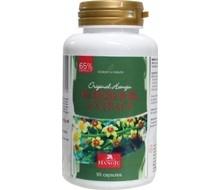 HANOJU Wierook extra 65% HPLC + vitamin (90cap)