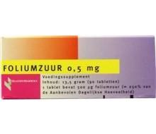 HEALTHYPHARM Foliumzuur 0.5mg (90st)
