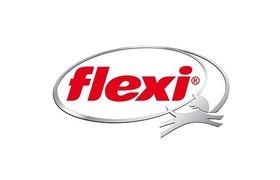 Flexi