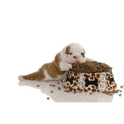 Hondenvoer/ -snacks