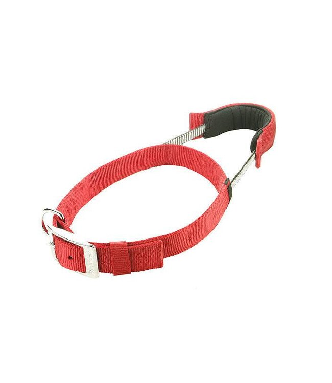 Patento Pet Pet Basic Dog Collar - red