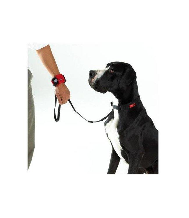 Patento Pet Hands-Free-lijn