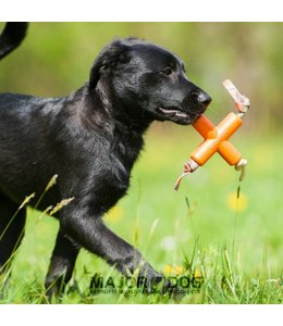Major Dog DogX