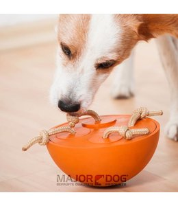 Major Dog Teeter Totter