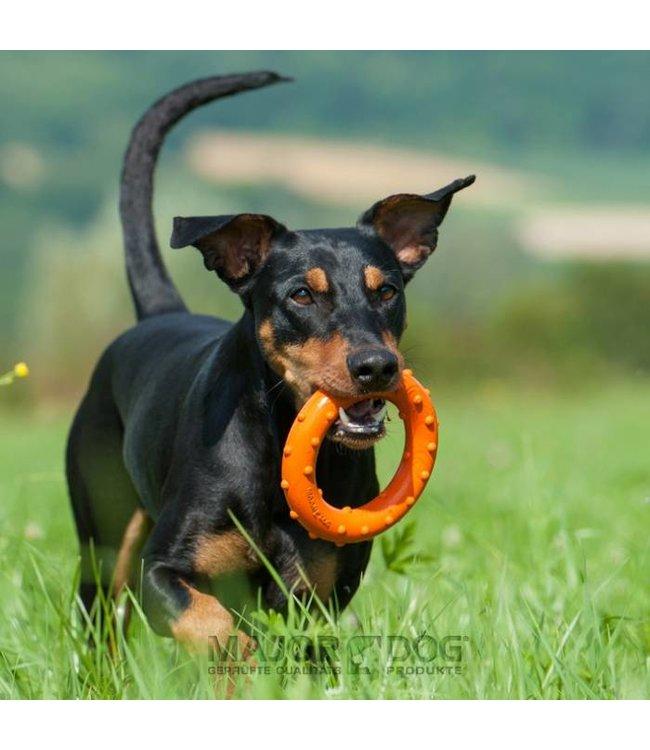 Major Dog Ring Rudi