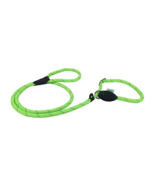 Dogogo Retriever dog leash 176 cm x 12 mm, green
