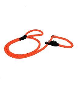 Dogogo Retriever dog leash, orange