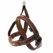 EzyDog QuickFit harness, brown