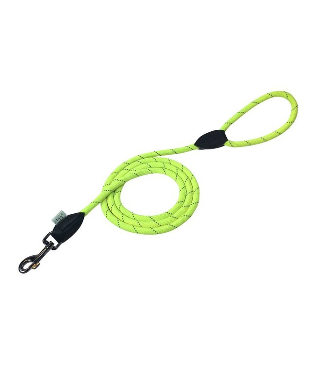Dogogo Dogogo leash with loop, 2 m x 12 mm, yellow
