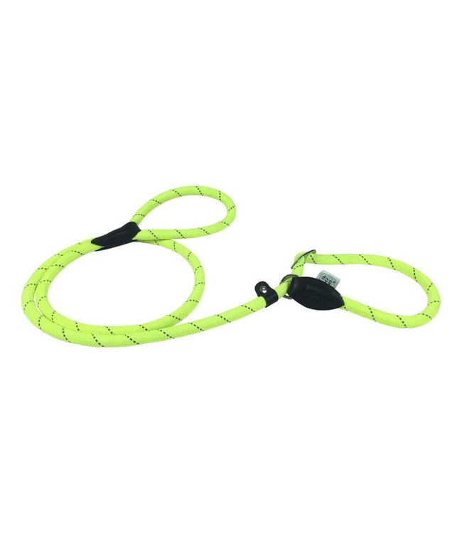 Dogogo Dogogo retriever dog leash, yellow