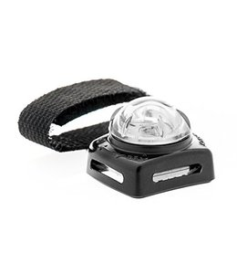 Adventure Lights Guardian PET BEACON – hondenlampje  wit