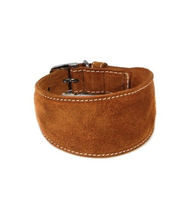 Das Lederband collar for greyhounds Toronto, cognac