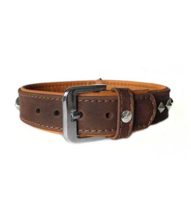 Das Lederband collar Roma, Mocca / Cognac