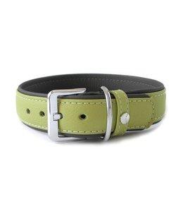 Das Lederband collar Amsterdam, lime / lava