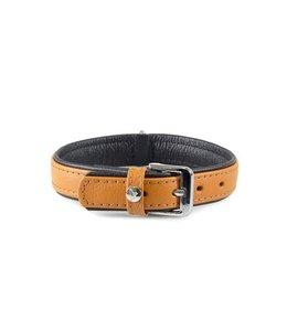 Das Lederband collar Denver, cognac / zwart