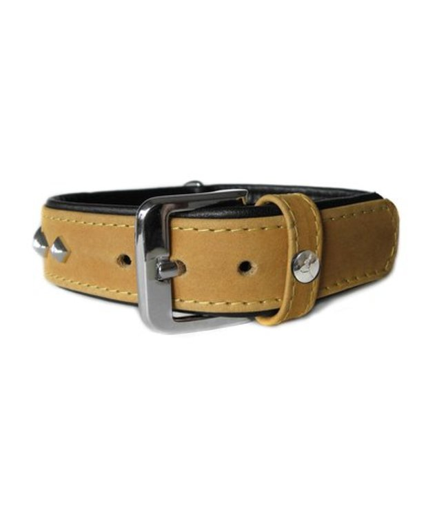 Das Lederband collar Roma, Sand / Black