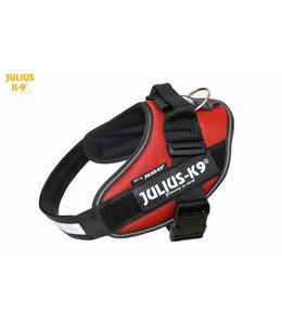 Julius-K9 IDC Power Harness bordeaux