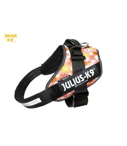 Julius-K9 IDC Power Harness pink flower