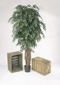 Kunstboom Ficus Liana