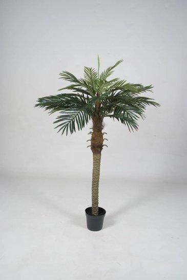 Kunstpalm Phoenix palm