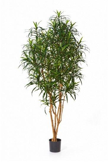 Kunstboom Dracaena Anita - (Zijdeplant)