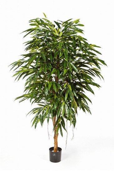 Kunstboom Longifolia