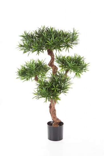 Kunstboom Podocarpus
