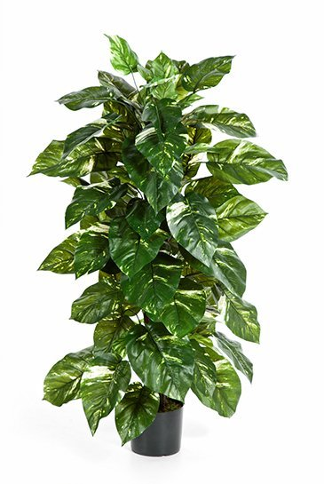 Kunstplant Philodendron