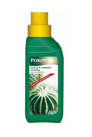 Pokon voeding Cactus& Vetplanten