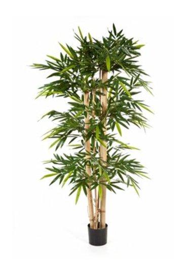 Kunstplant Bamboo giant
