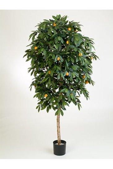 Kunstplant Citrus mandarine - (Zijdeplant)
