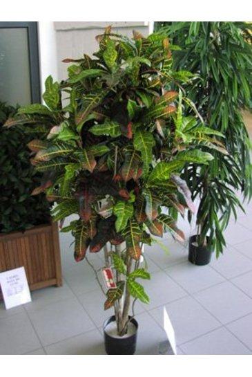Kunstplant Croton exellent - (Zijdeplant)
