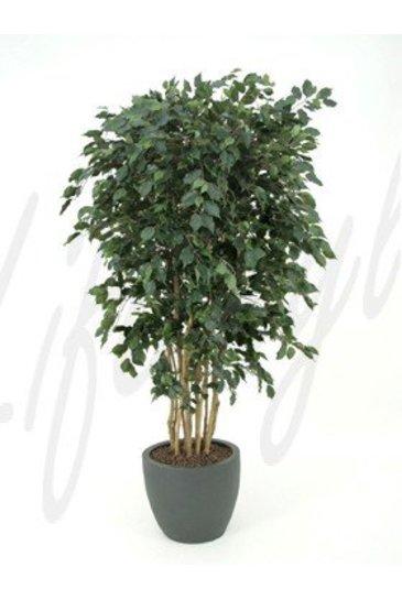 Kunstplant Ficus exotica