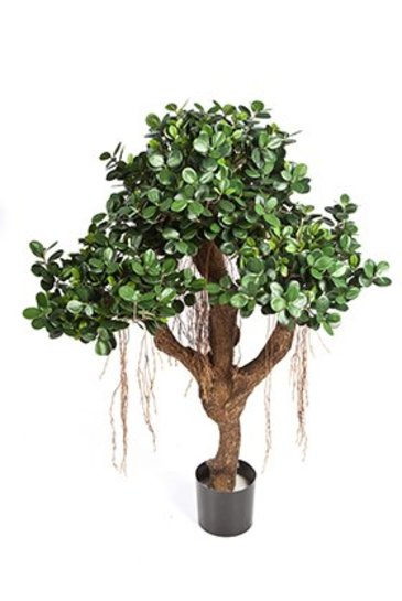 Kunstplant Ficus panda