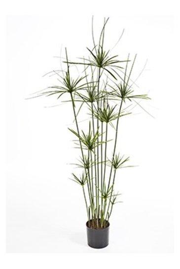 Kunstplant Papyrus tree