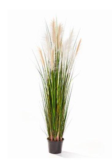 Kunstplant Grass reed - (Zijdeplant)