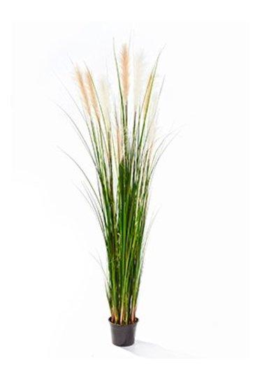 Kunstplant Grass reed