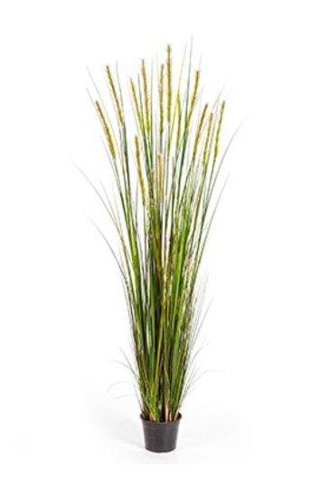 Kunstplant Grass foxtail