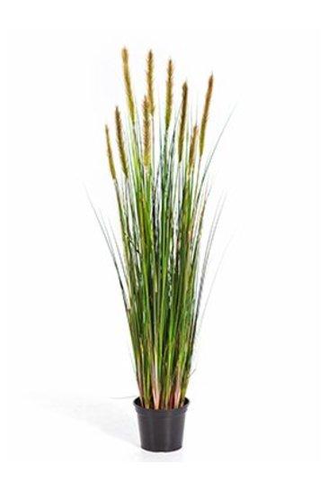 Kunstplant Grass foxtail - (Zijdeplant)