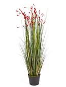 Kunstplant Grass coral