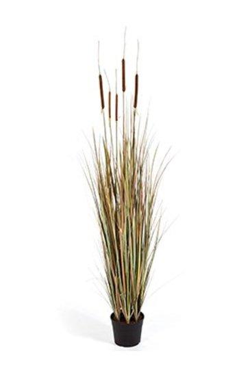 Kunstplant Grass cattail