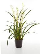 Kunstplant Cymbidium wild orchid