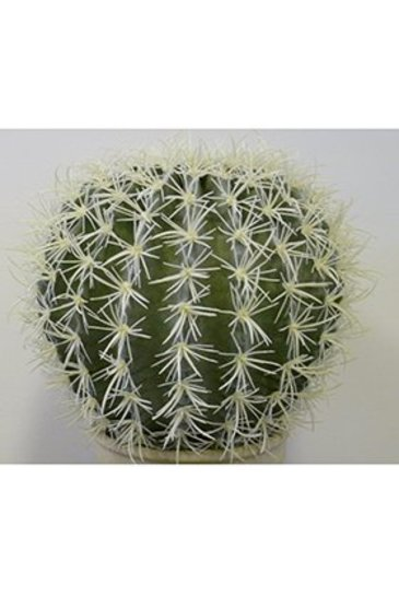 Kunstplant Golden barrel cactus