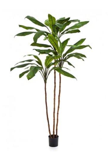 Kunstplant Cordyline fruticosa tree
