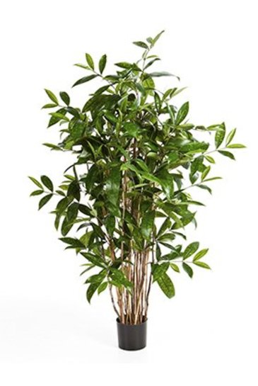 Kunstplant Dracaena surculosa tree - (Zijdeplant)