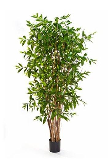 Kunstplant Dracaena surculosa tree