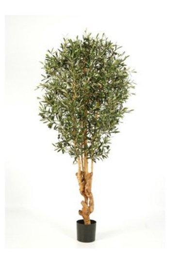 Kunstplant Natural forest olive