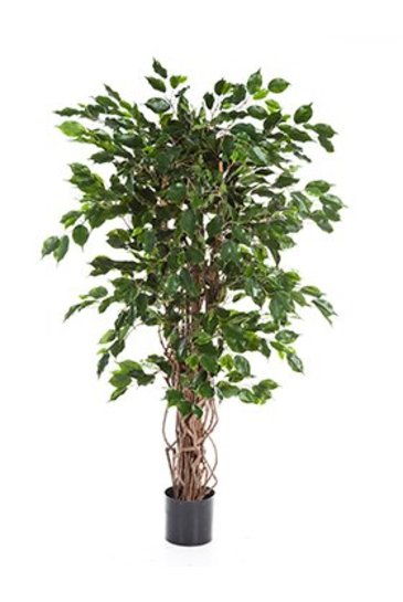 Kunstplant Ficus liana exotica - (Zijdeplant)