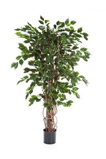 Kunstplant Ficus liana exotica