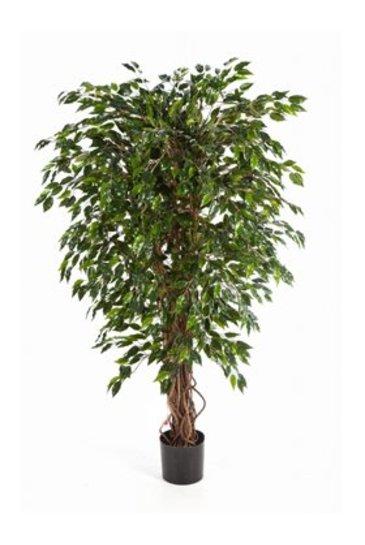 Kunstplant Ficus hawaiian liana - (Zijdeplant)
